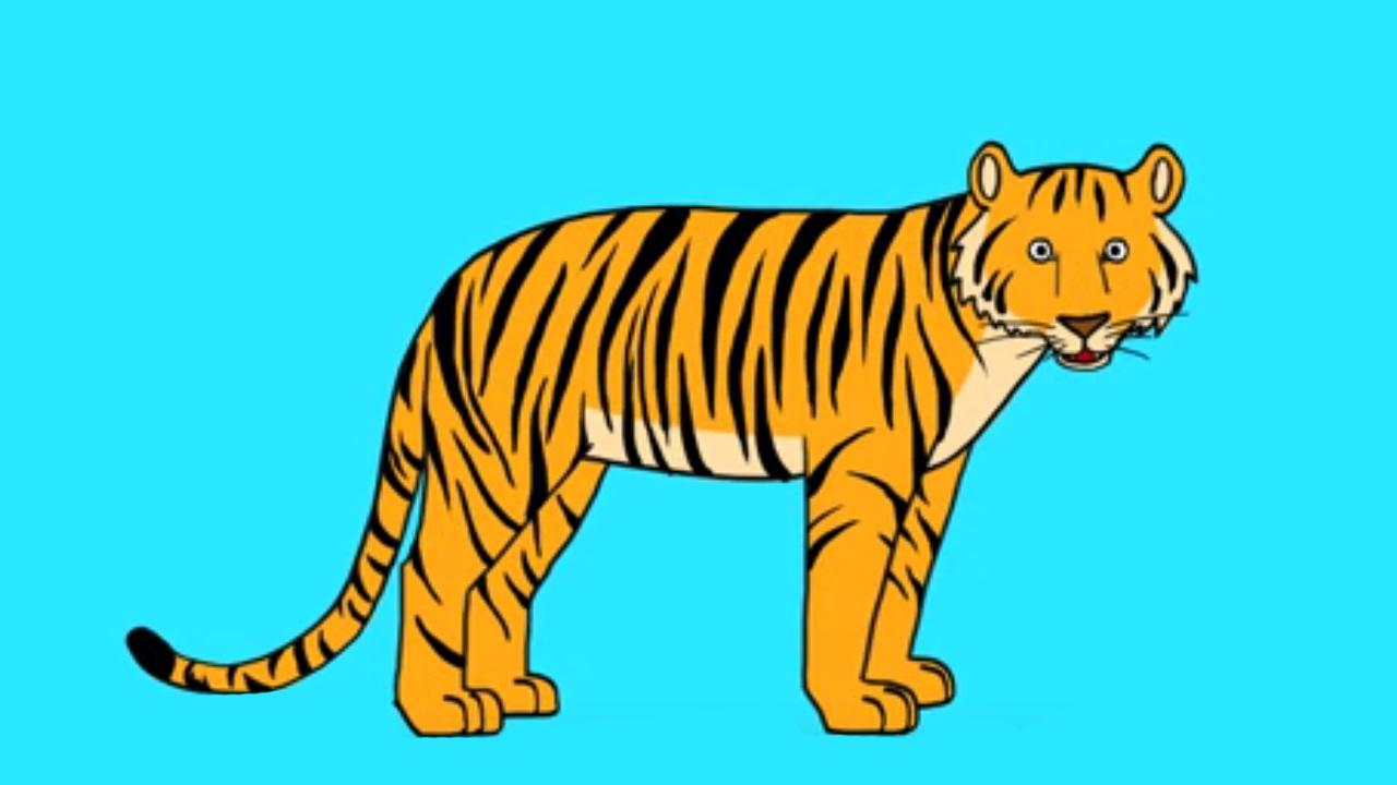 Comment dessiner un tigre facilement - Image dessin tigre ...